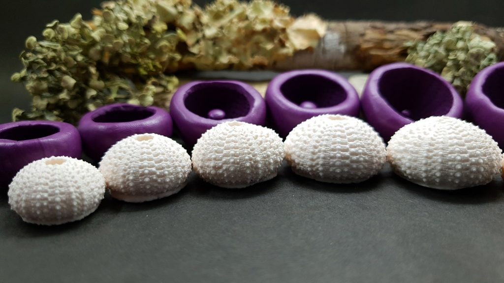 Sea Urchin's silicone molds for making good impressions 7